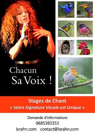 affiche oiseau130120.jpg
