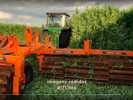 Agricultura de conservación, una historia de éxito. Notas sobre el informe Globo Rural.