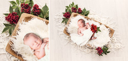 Christmas themed newborn session