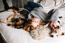 Gemütliches Homeshooting mit Hunden
