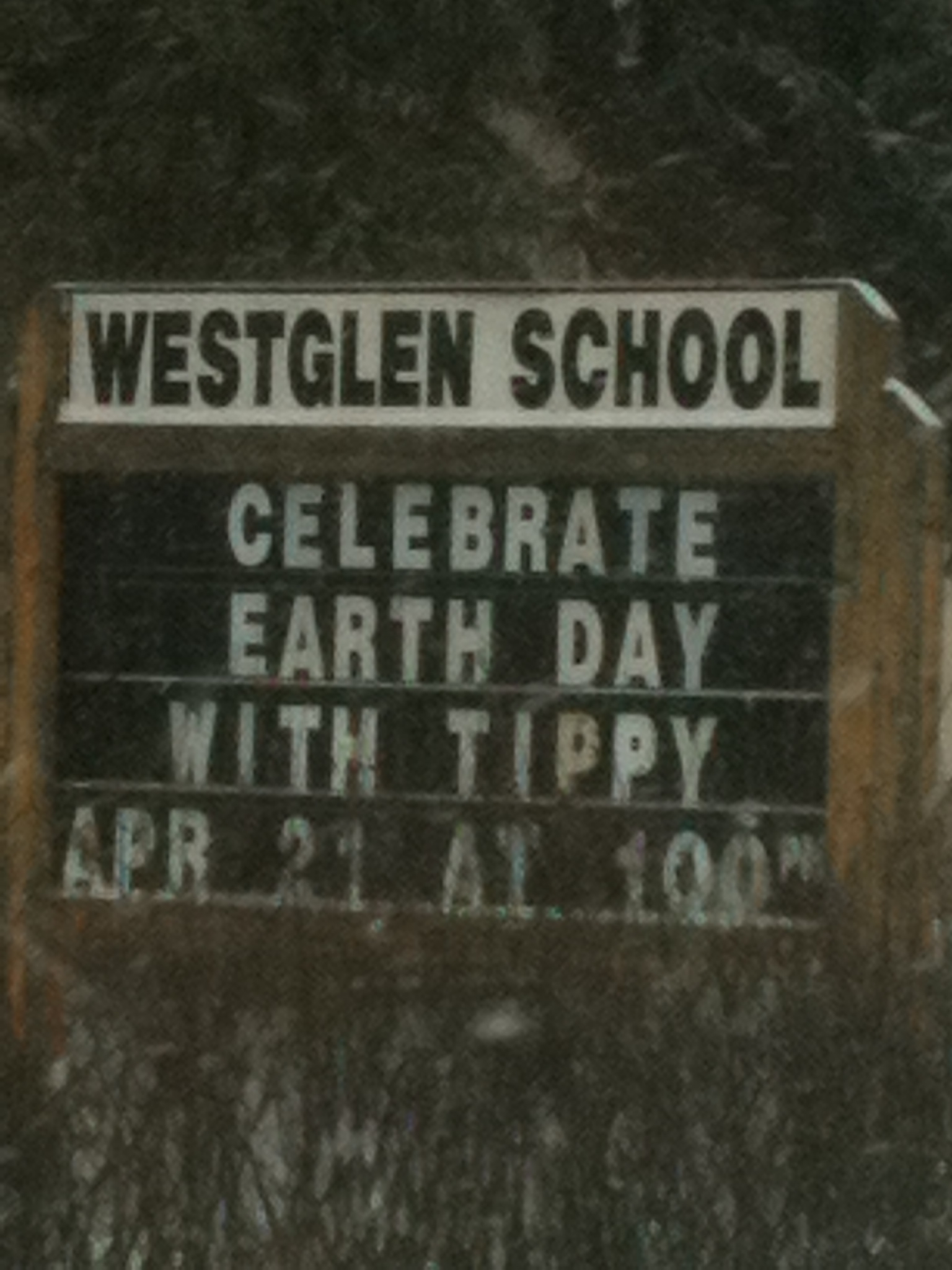 Tippy at Westglen School