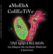 Amoeba Collective (Tippy Agogo & Bill Bourne)