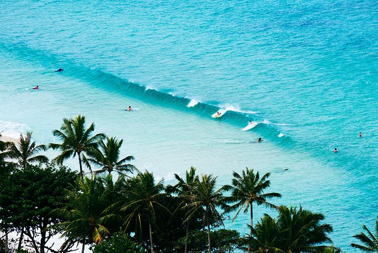 Surf Levels