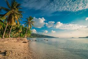 surf-getaways-vanuatu-beach.jpg.jpg