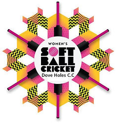 2021-06-04 08_43_55-DHCC Womens soft bal