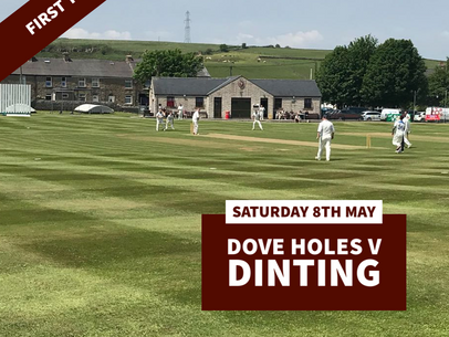 Cricket this weekend... Cup Cricket!