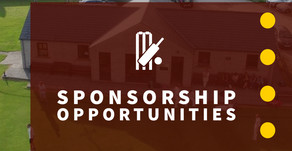 Support Your Local Cricket Club