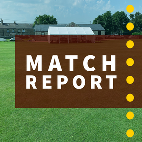 Match Report   Whaley Bridge 96ao Dove Holes 167ao   Dove won by 71 runs