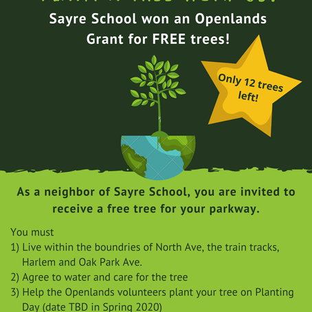 FREE Trees for Sayre School Neighbors!! Reply before Feb. 28th.
