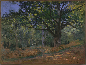 The Bodmer Oak, Fontainebleau Forest By Claude Monet