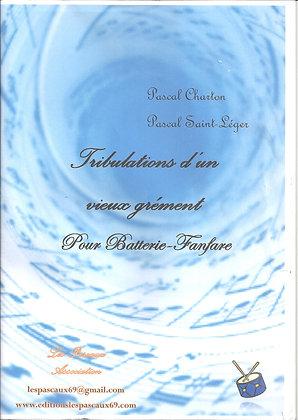 TRIBULATIONS D'UN VIEUX GREMENT