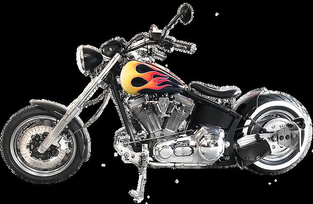 One Off Custom Fire Harley Davidson BIG FOOT