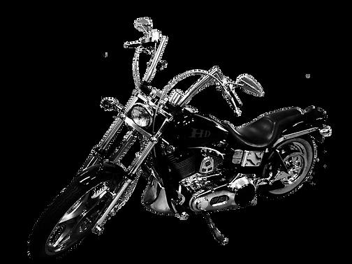 bike 2_edited.png