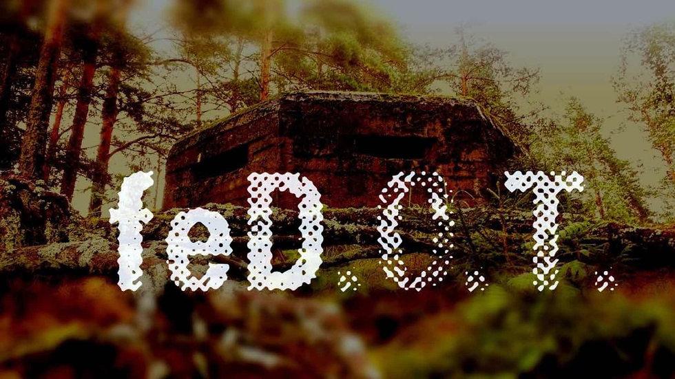 FeDOT_filmproject_DMH_poster_16x9_LQ.jpg