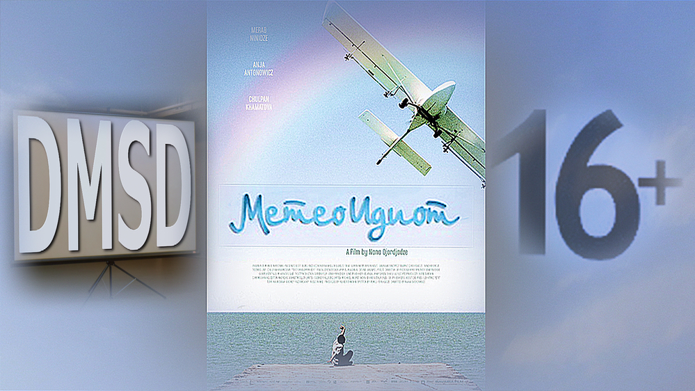 Meteoidiot_film_DMSD_2008_poster