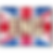 Eng language_DMSD button_on UK flag