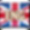 Eng language_DMSD button_on UK flag