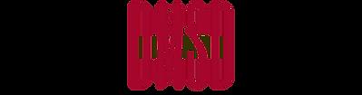 DMSD logo on transparent_950x250_150421.
