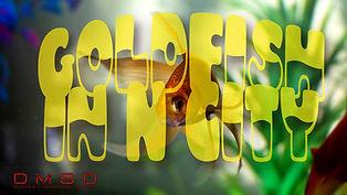 Goldfish+in+N+City_RU-film_DMSD_3000x168