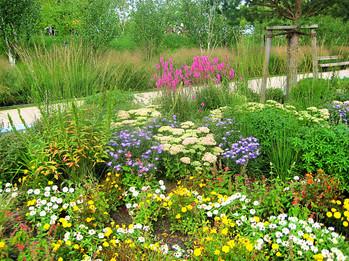 Sonja Schürger Gartengestaltung