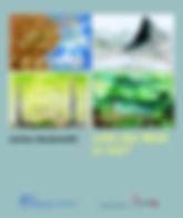 Cover_Ausstellungskatalog.jpg