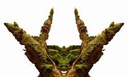 Wald-18