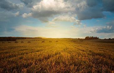 landscape-2144650_1920.jpg