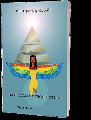 Le codex grammatical égyptien