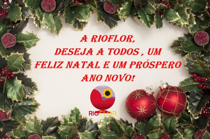 Feliz Natal e um Próspero Ano Novo!!