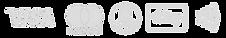 msuk-payment-logos-768x129.png