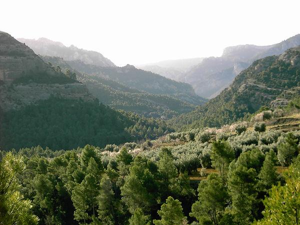 Sacred Valley - copia.jpg