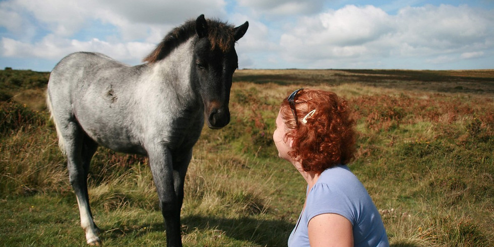 Animal Communication for Adults - 3 Days