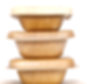 areca takeaway container.png