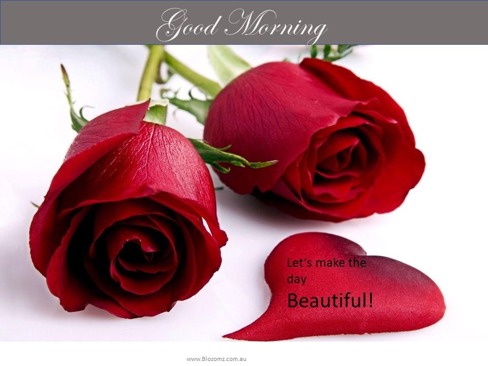 Good Morning Message Rose Petal