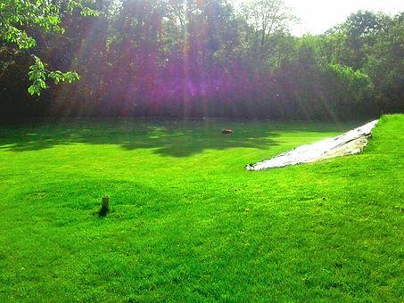 kosiarka automatyczna dba o trawnik
