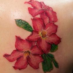 #tatmaps #tattoos #tattooartist #tattoosbydynamite #ouch #ink #idotattoos