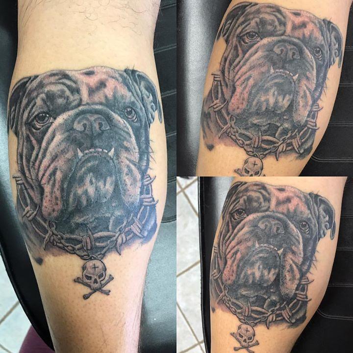 #blackandgrey #englishbulldogs #englishbulldog #englishbulldogsofinstagram #realism #dog #phucstyx #