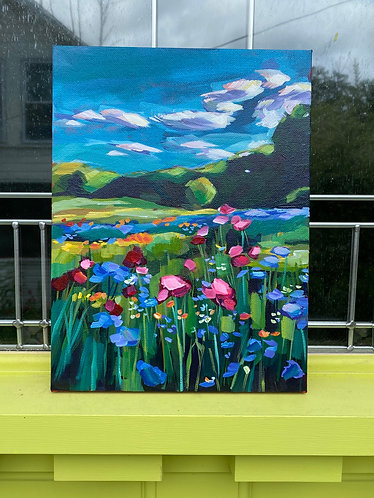 Camden wildflowers