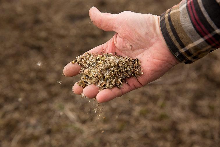 DALC Erickson Prairie Seeding _MG_5312.j