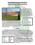 Good Oak burn handout cover.jpg