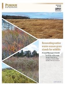 Renovating Native Warm_Season Grass Stan