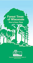 Forest-Trees-of-Wisconsin---How-to-Know-