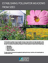 Establishing-Pollinator-Meadows-from-See