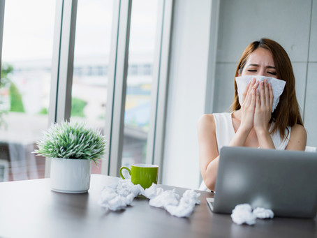 It's Right Under Your Nose:  Why you have sinus issues!