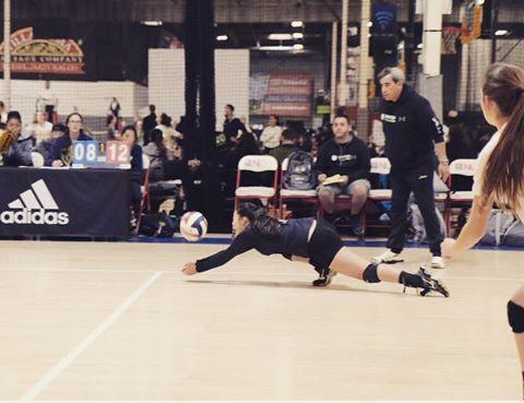 Coach sam matt amy diving.jpg