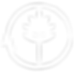 teatree icon 2.png