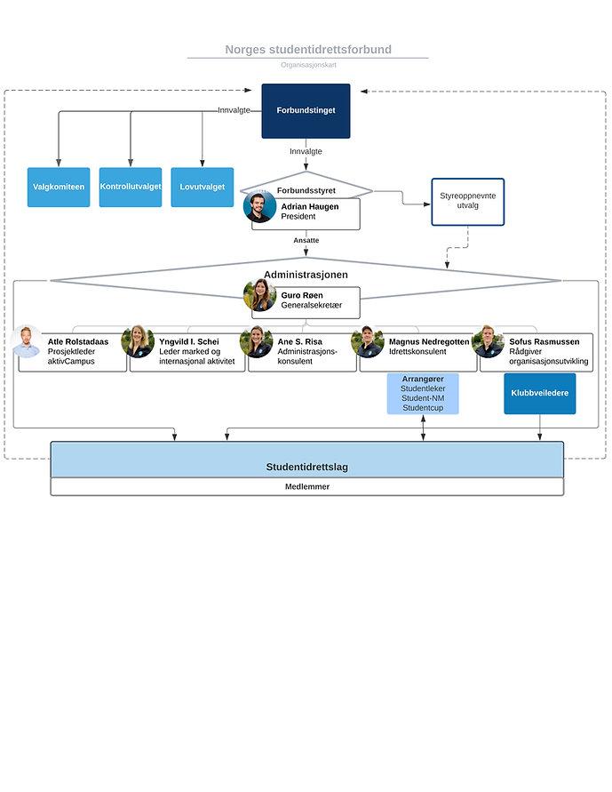 Org.kart 2.jpg