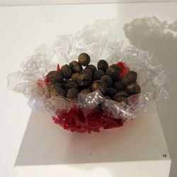 The Plastic Bowl