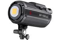 Jinbei EF-150D LED_1.jpg
