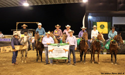 5 and Under Sale Incentive Draft winners